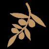Оливковоемасло